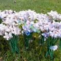 bumagnie-cveti-1.jpg