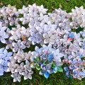 bumagnie-cveti-5.jpg