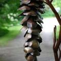 cones-of-spades-12.jpg