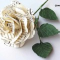 cveti-iz-gazet-1.jpg