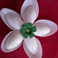 cveti-iz-logek-8.jpg
