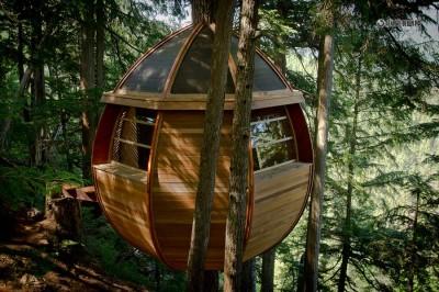 Дом на верхушке дерева из старых досок.