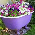flower-garden-of-baths-1.jpg