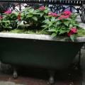 flower-garden-of-baths-2.jpg