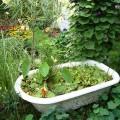 flower-garden-of-baths-3.jpg
