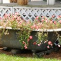 flower-garden-of-baths-7.jpg