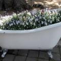 flower-garden-of-baths-9.jpg