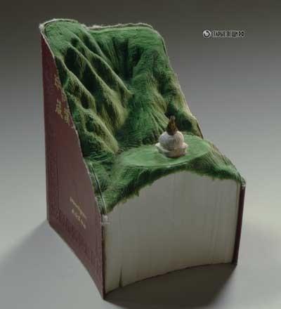 Мини Ландшафты из старых не нужных книг.