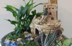 Идеи по составлению потрясающих миниатюрных садиков