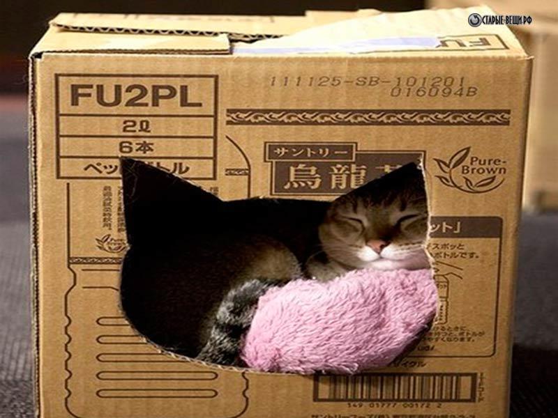 Как сделать дом из коробки своими руками для кота
