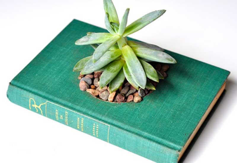 Как сделать горшок для цветка из книги