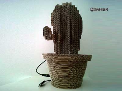 cacti-2.jpg