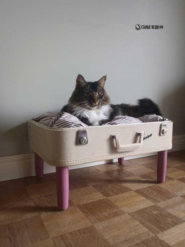 лежаки для котов из чемодана