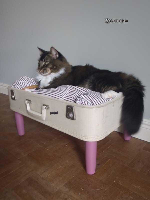Мягкий домики для кошек своими руками