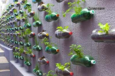 Сад из пластиковых бутылок в сан паулу