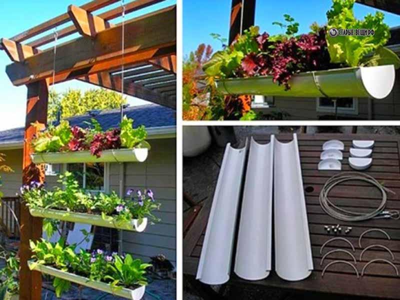 Вертикальное озеленение балкона своими руками 43