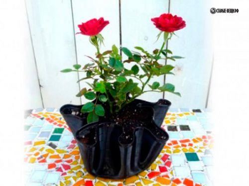 Что можно сделать своими руками из лепестков роз