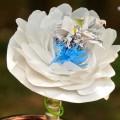cveti-iz-oxodov-13.jpg
