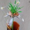 cveti-iz-oxodov-3.jpg