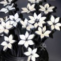 cveti-iz-pokrishek-9.jpg