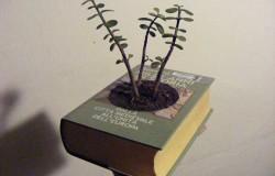Цветочный горшок из книги