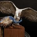 ptici-iz-nogtey-2.jpg