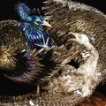 ptici-iz-nogtey-5.jpg