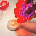 zveti-iz-plastikovix-butilok-20.jpg